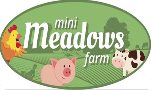 Mini Meadows Farm