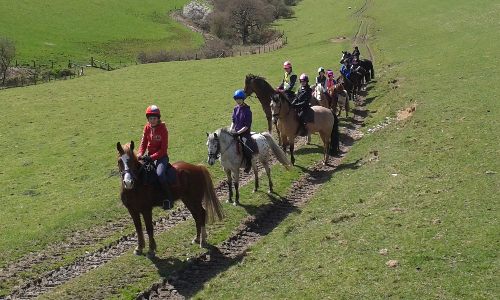 Rheidol Riding Centre