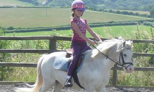 Cantref Riding Centre