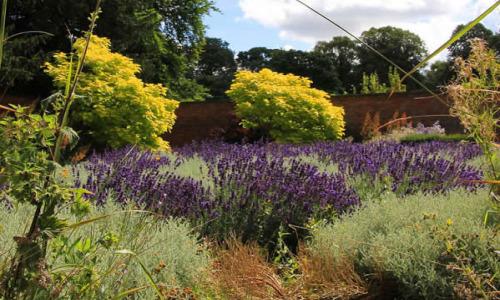 Elmshall Gardens & Country Park