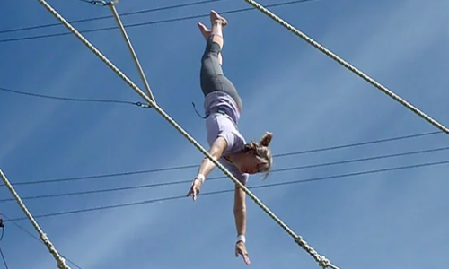 All Bars Flying Trapeze