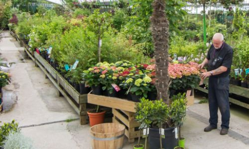 Charnley's Home and Garden Centres