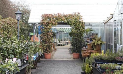 Lowdon Garden Centre